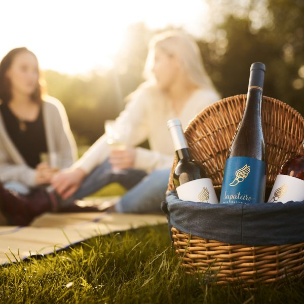 Wines for a Pic Nic